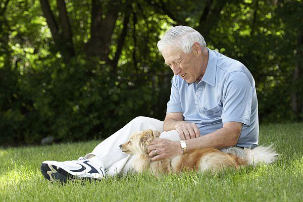 Perros-y-personas-mayores